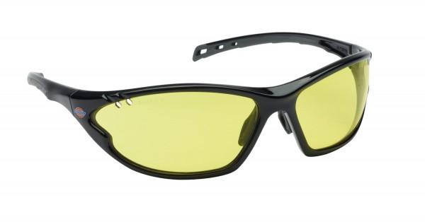 Schutzbrille Vision